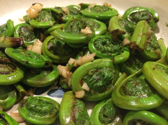 Fiddleheads!